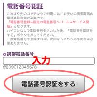 電話占いFeel(フィール)電話番号認証